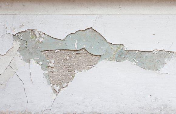 Lead Inspection Bay Area