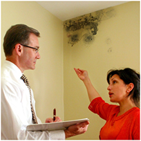Mold Testing Service in San Francisco